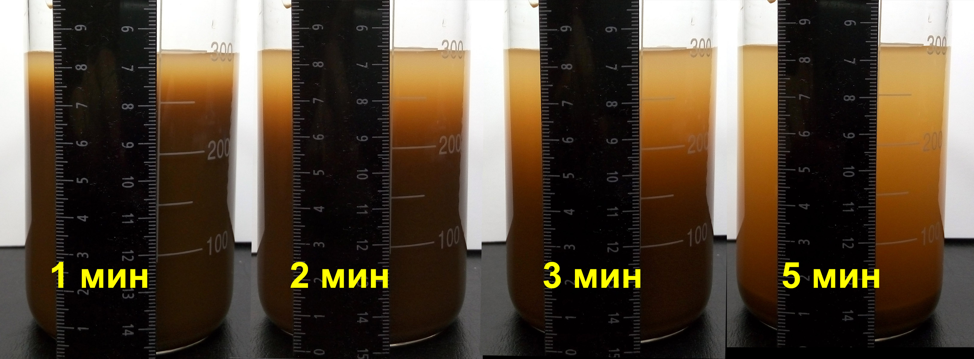 Water after treatment by the WS water conditioner for 3 seconds.